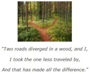 two roads diverged...