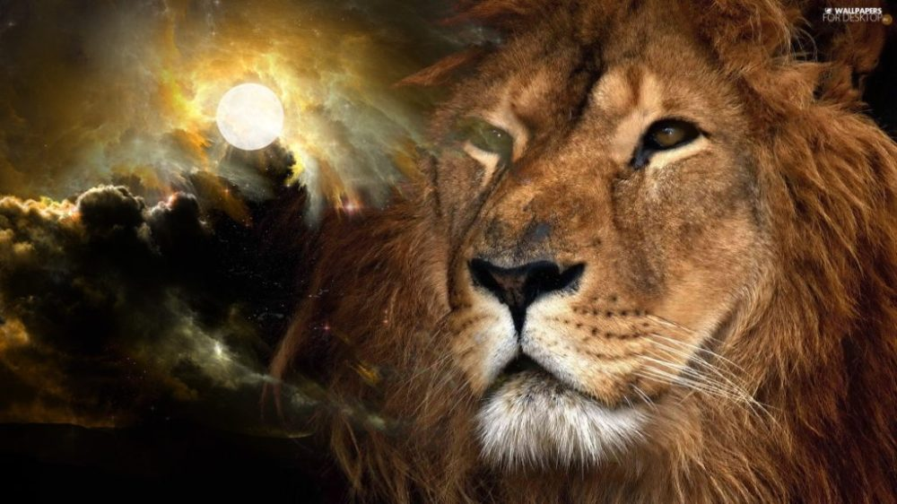 lion-clouds-moon-1024x576
